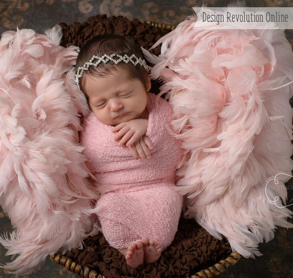 Newborn Props (Newborn Photography Tips)